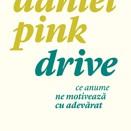 Pink Daniel  - Drive. Ce anume ne motiveaza cu adevarat